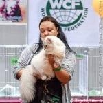Oskar WCF show